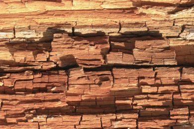 Repareren houtrot